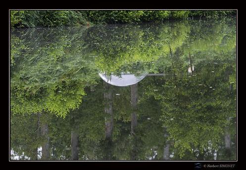 Bulle hébergement dôme effet miroir - Les Butineuses 28072021.jpg