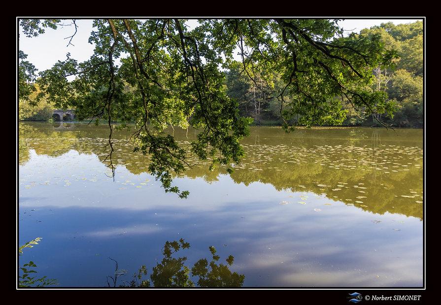 Etang_de_Néal_haut_vue_pont_Paysage_-__P