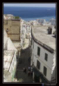 Vue du haut de la Casbah.jpg