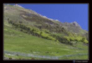 Pyrénées_1_-_paysage_-_Canon_EOS7DMII+_S