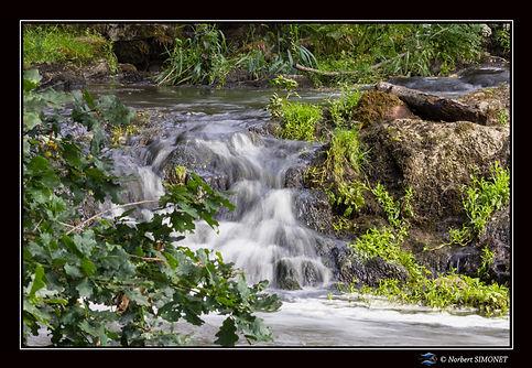 Cascade_Paysage_-_Etang_de_néal_26062019