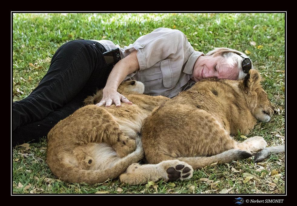 Lionceaux et Plume main posée - Cadre Pa