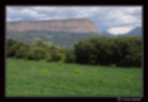 Paysage_étape_2_bis.jpg