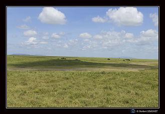 Plaine Grande migration bis - Cadre Pays