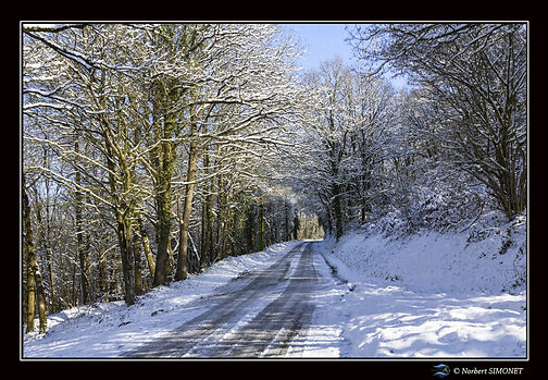 Route de Néal Paysage bis - Cadre Paysag