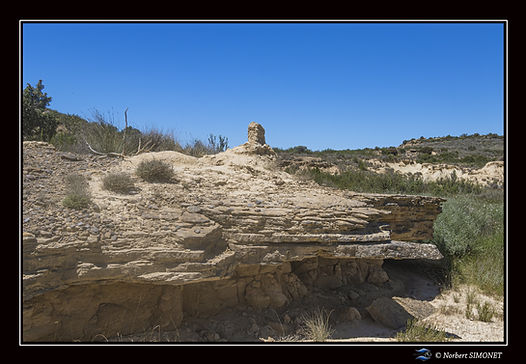 Table rocheuse Bardenas 14 - Paysage - C