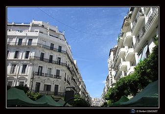 Immeubles Alger.jpg