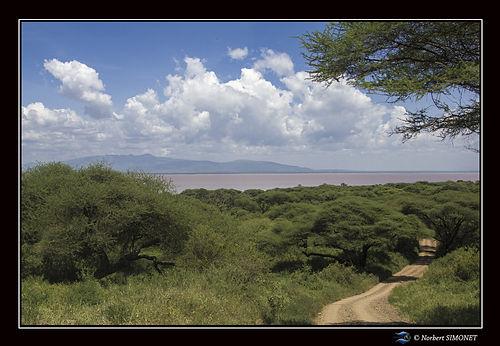 Lac de Manyara vu de la piste - Cadre Pa