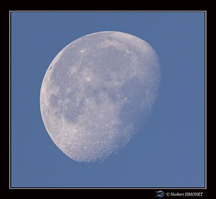 Lune - Cadre Carré - Les Butineuses 28072021.jpg