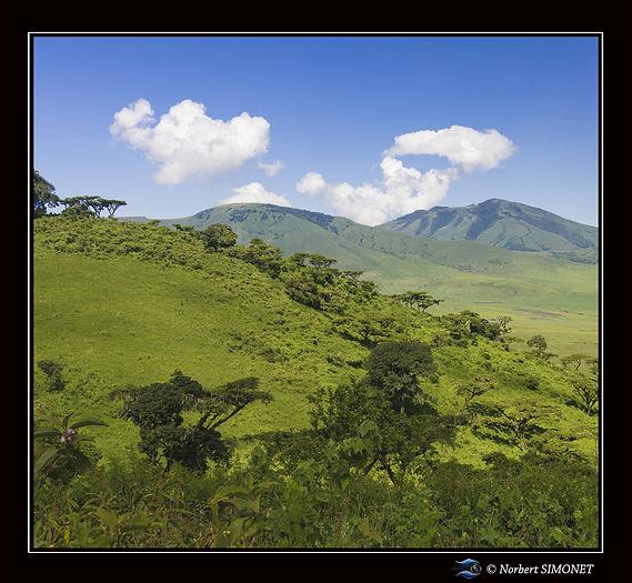 Flanc_du_cratère_du_Ngorongoro_-_Cadre_