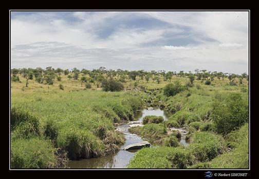 Cours d'eau bis - Cadre Paysage - Sereng