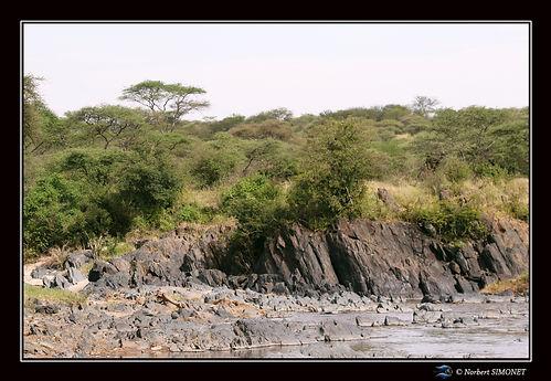 point d'eau hippopotames - Cadre Paysage