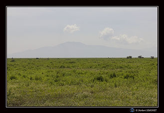Paysage - Cadre Paysage - Plaines de Ndu