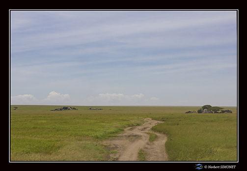 Kopjes et paysage 1 - Cadre Paysage - Se
