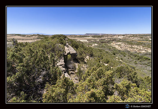 Sommet rocheux  Bardenas - Paysage - Can