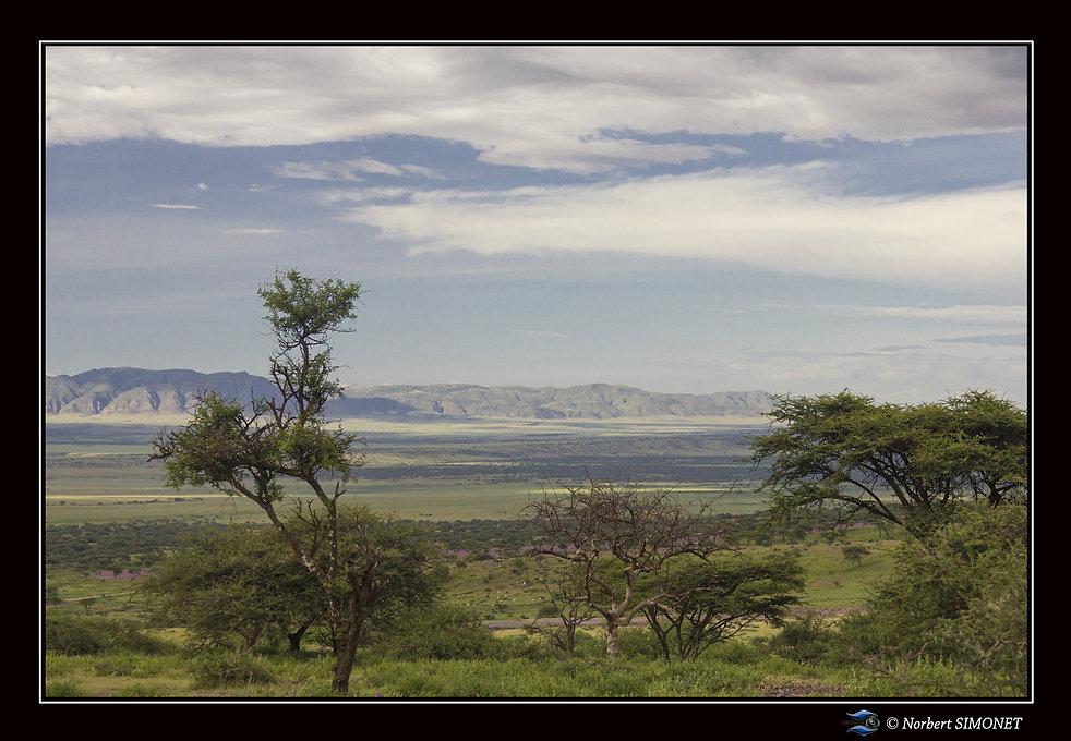 Paysage - Cadre Paysage - Plaine du Ngor