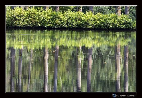 Miroir - Cadre Paysage - Les Butineuses 28072021.jpg