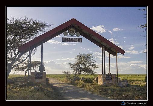Porte du Serengeti - Cadre Paysage - Pla