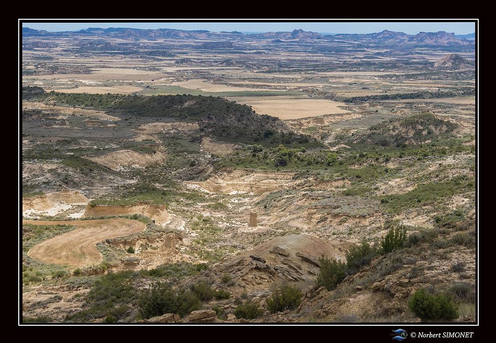 Vue d'un point haut bis - Bardenas -  29