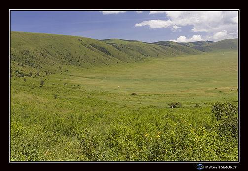 Descente_dans_le_cartère_du_Ngorongoro_