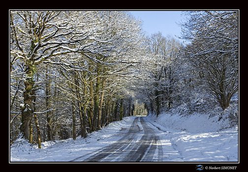 Route de Néal Paysage - Cadre Paysage -