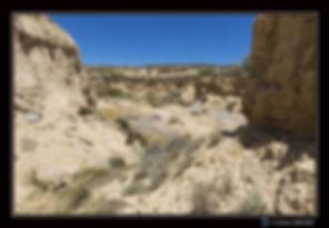 Canyon en eau  Bardenas bis - Paysage -