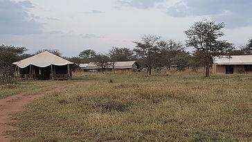 ndutu-wildlands-camp.jpg