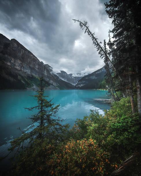 Lake Louise Banff 2019