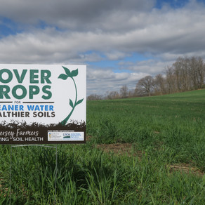 New Cover Crop Sign!
