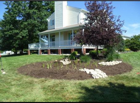 Residential Rain Gardens in the Neshanic