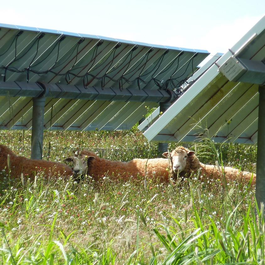 North Jersey Renewable Energy Development Assistance Program