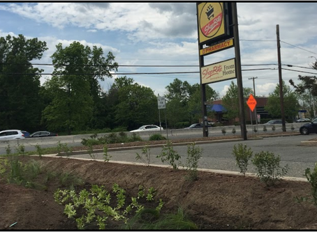Rain Garden at the ShopRite of Flemington