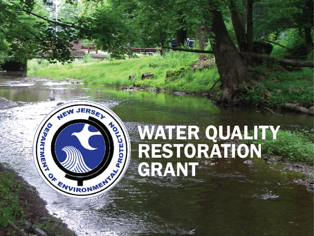 Development of a Watershed Protection Plan for the Pleasant Run and Holland Brook Watersheds