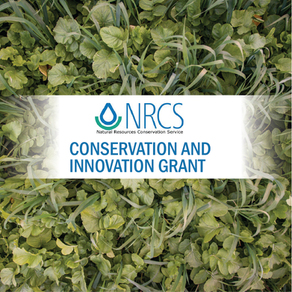 Cover Crop Experimentation to Achieve Optimum Soil Health in New Jersey