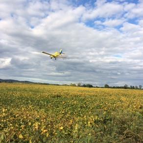 Aerial Seeding Cover Crop