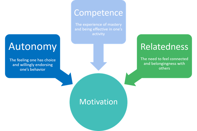 Self-Determination-Theory-Visual_1