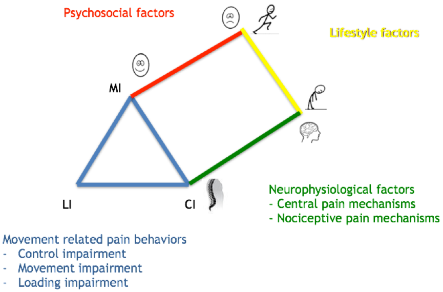 Clinical Reasoning Tool