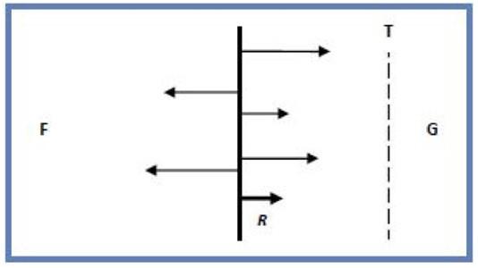 ML Vector model
