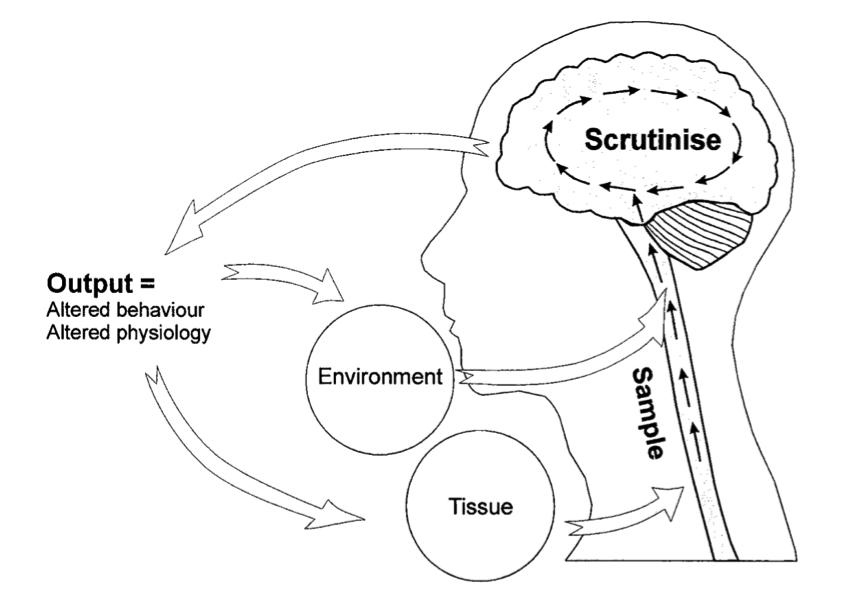 MatureOrganismModel1