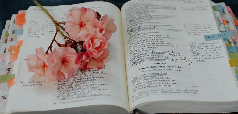 pink%20petaled%20flower%20on%20book_edit