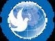 """Павел Шевцов, и.о. Руководителя Россотрудничества, выступил на форуме  """"Европейский меридиан,  XXI"""""""
