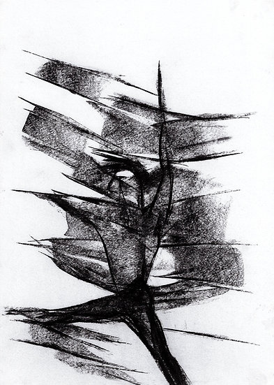 Original charcoal drawing on illustration paper.
