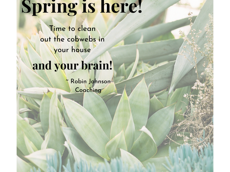Are you someone who likes to Spring Clean?