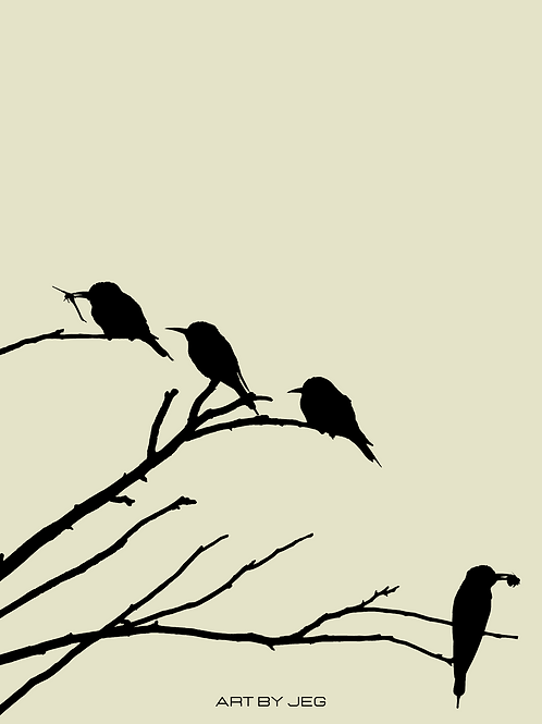 Birds out