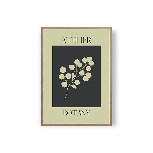 Atelier Botany - Dille Studio