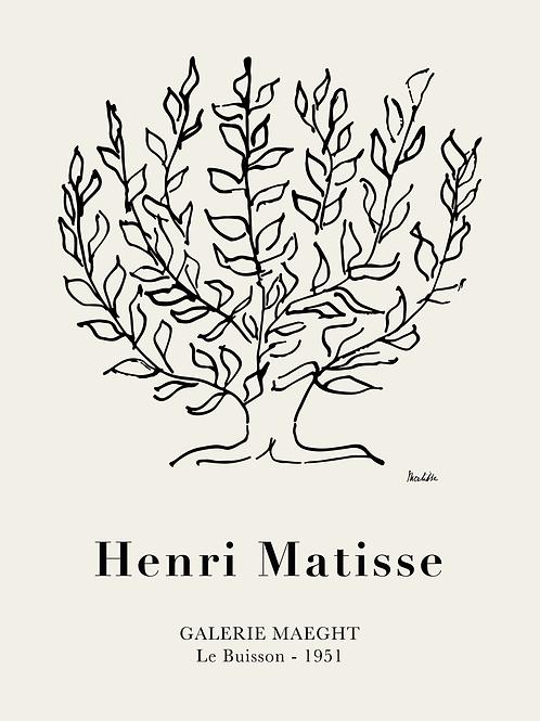 Matisse No2