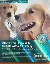 toothbrush-624x793.jpg