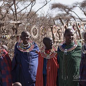 Масаи Африки