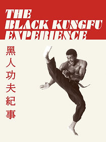 The Black kung fu experience.jpg