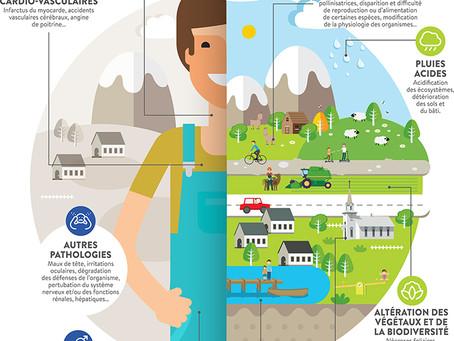 Le naturopathe et les facteurs de santé